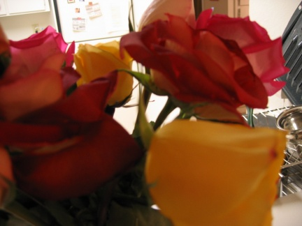 roses and kitchen